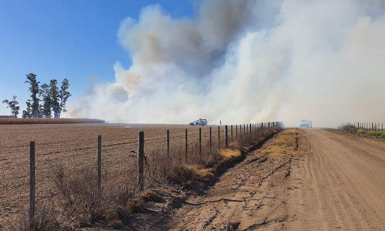 FOTO: El incendio se origina 30 metros adentro del lote de un campo de maíz.