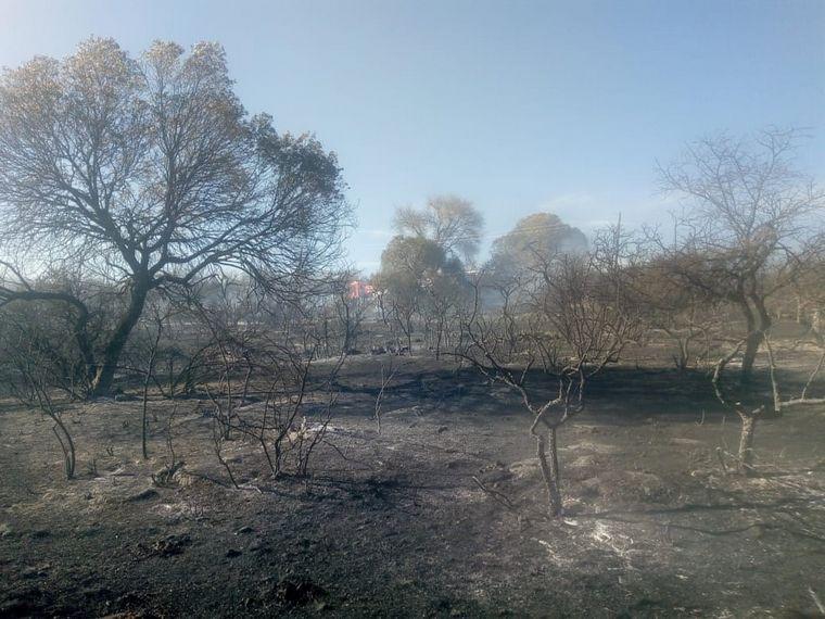 FOTO: Bomberos combaten un incendio en Bialet Massé