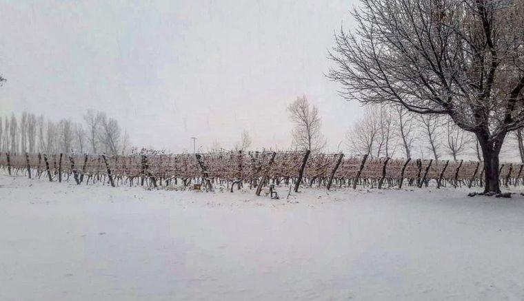 FOTO: Nieva en Mendoza