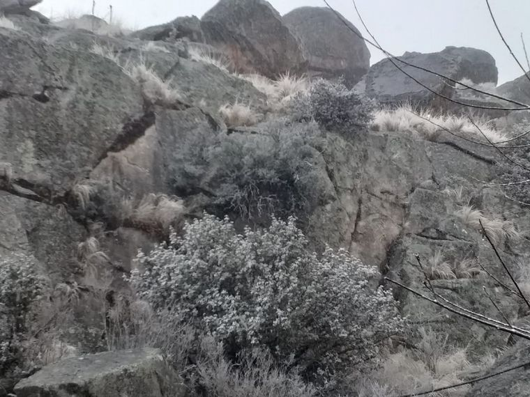 FOTO: Comenzó a nevar en el Cerro Champaquí