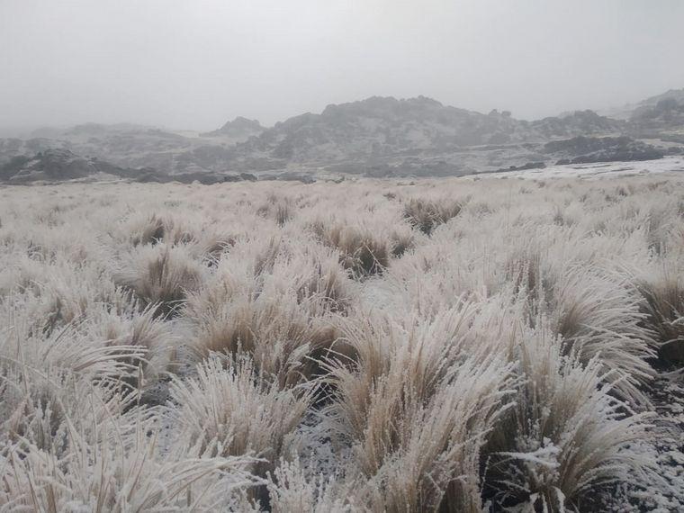 FOTO: Un manto blanco cubrió a distintas zonas de las sierras. Foto: Oscura Overa