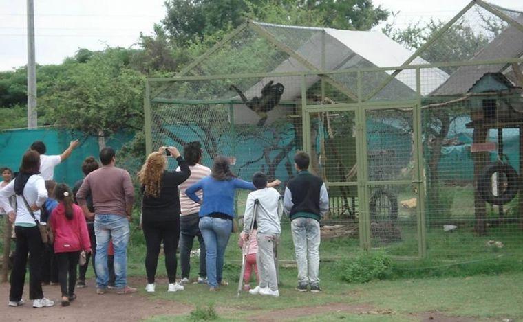 FOTO: En la reserva hay pumas, monos, guanacos, llamas, comadrejas, liebres y zorros.