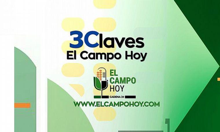 VIDEO: 3 Claves de El Campo Hoy - La agroindustria de Marcos Juárez vuelve al trabajo
