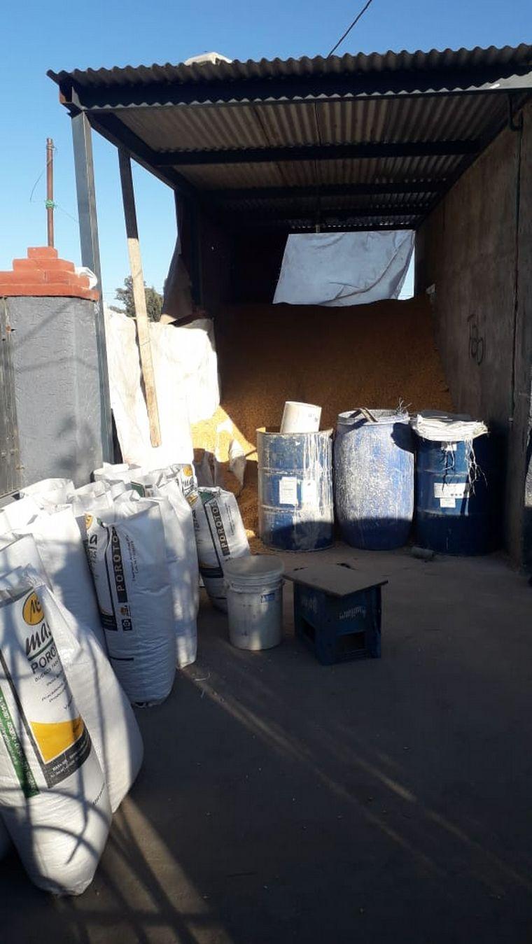 AUDIO: Recuperan 5 toneladas de maíz robado de vagón descarrilado