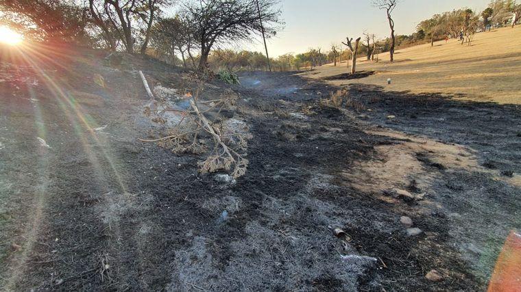 FOTO: Incendio en el Parque Sarmiento de Córdoba.