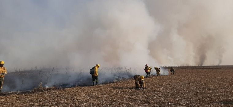 FOTO: Brigadistas y bomberos combaten el incendio en las islas del Paraná