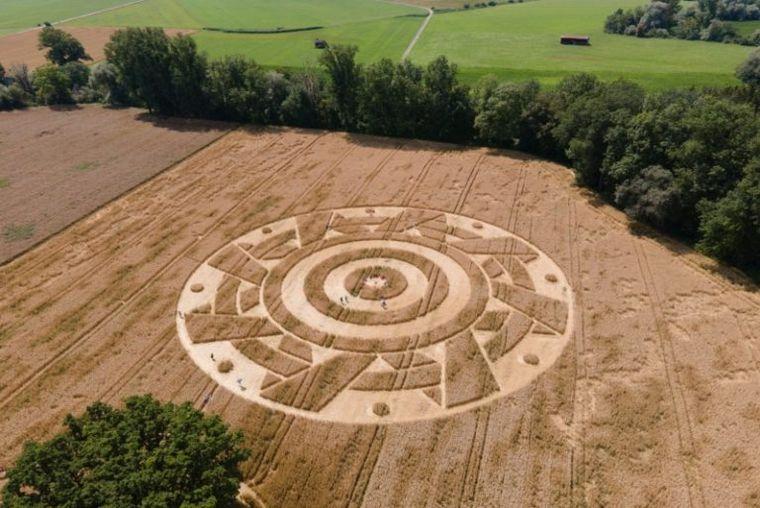 Alemania: aparecen agroglifos en una plantación de cereales