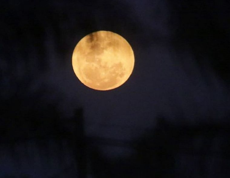 FOTO: Moisseeff espera comenzar a trabajar pronto en la elaboración del perfume de la Luna.