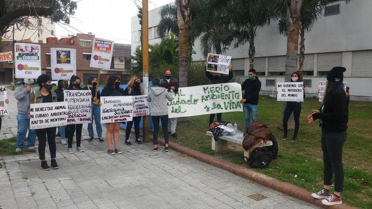 AUDIO: Ambientalistas se manifestaron por los derechos porcinos