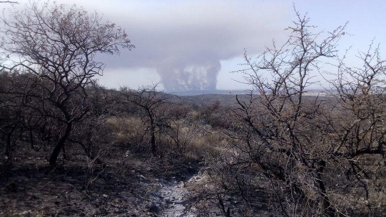 FOTO: El incendio afecta a la reserva natural detrás de La Estanzuela.