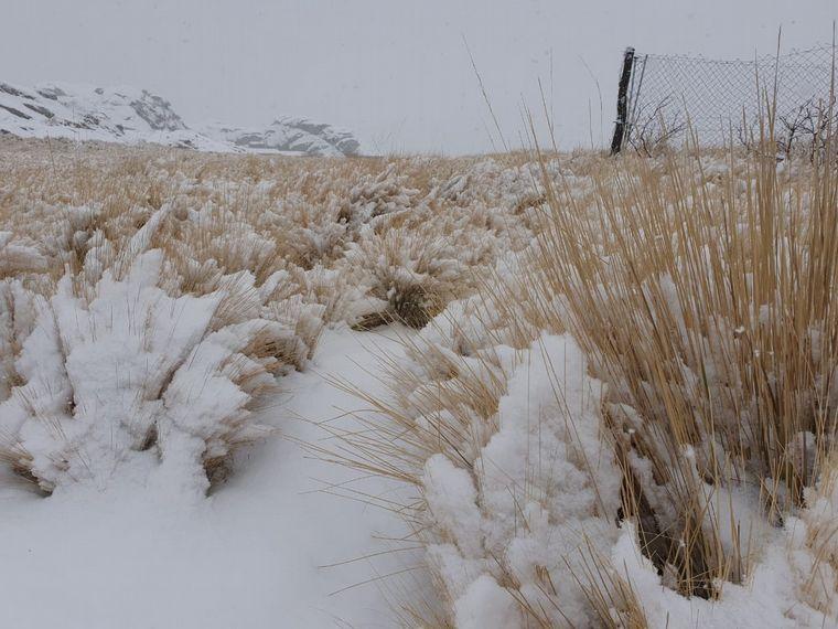 FOTO: Intensa nevada en El Champaquí (Foto: Oscura Overa).