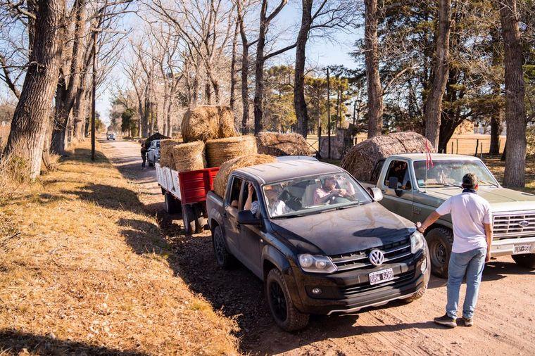 FOTO: Productores llevan comida a animales afectados por los incendios en Córdoba