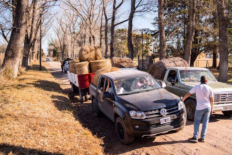 FOTO: Productores llevan comida a animales afectados por el fuego