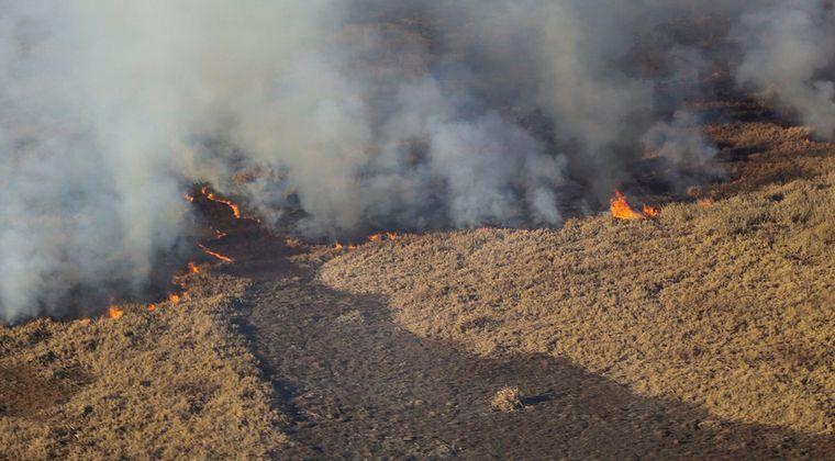 AUDIO: Incendio en el Delta del Paraná: se suman 60 brigadistas