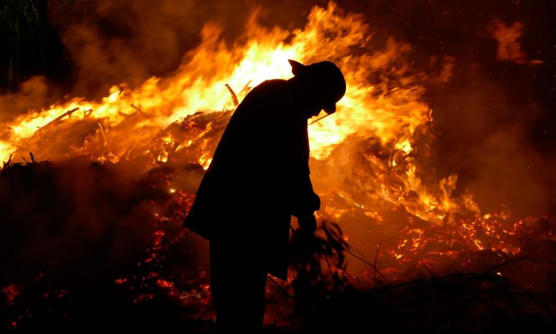 AUDIO: Presentaron plan de reforestación ante el daño por incendios en Córdoba