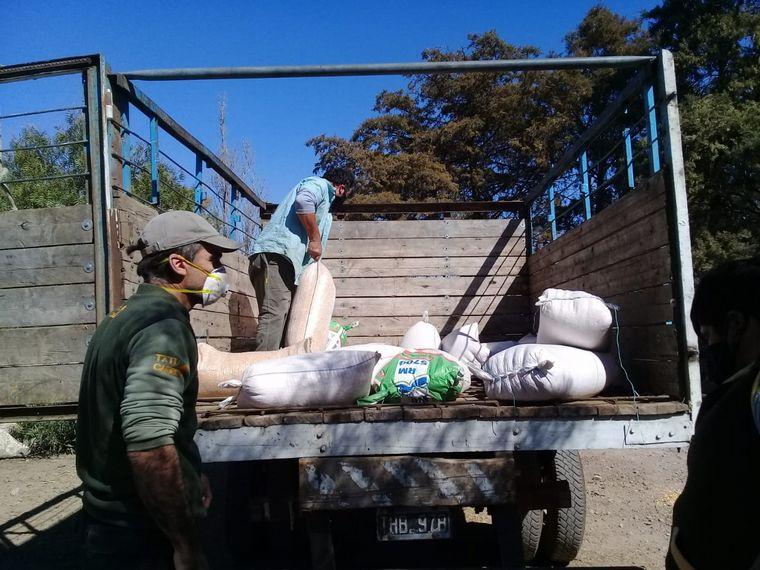 FOTO: Donan alimento para los animales víctima del fuego en las Sierras.