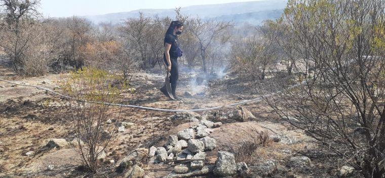 FOTO: Otra vez el fuego devora pastizales y bosque en Traslasierra.
