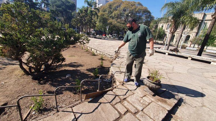 FOTO: Indignante: robaron las plantas de la remozada Plaza Colón