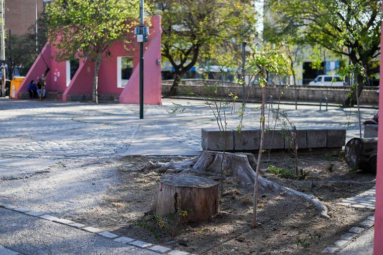 FOTO: Realizaron obras de mejoramiento en el Paseo de las Artes.
