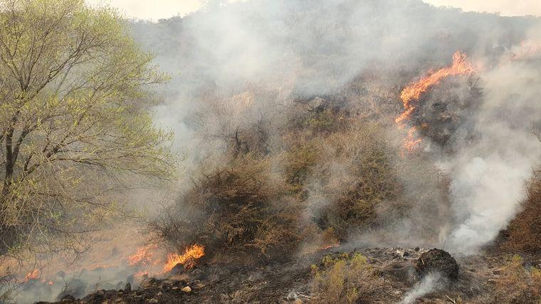 VIDEO: Bomberos combaten incendios entre San Marcos y Cruz del Eje