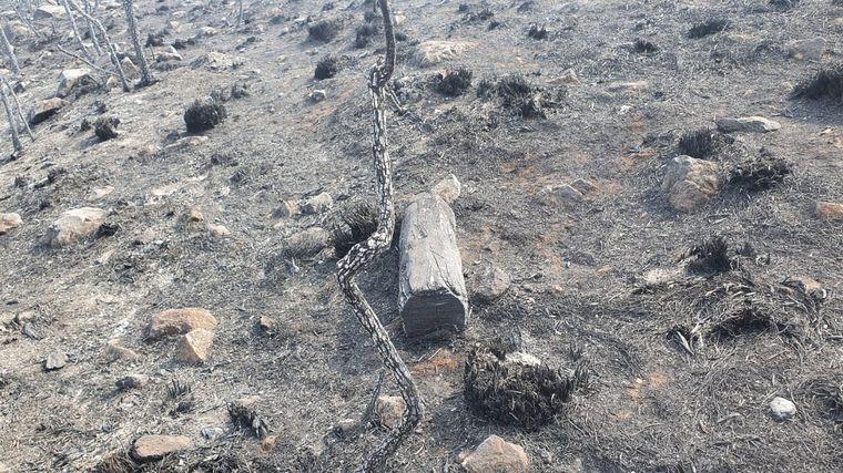 FOTO: Imágenes de cómo quedó la Ruta 34 hacia Mina Clavero tras los incendios