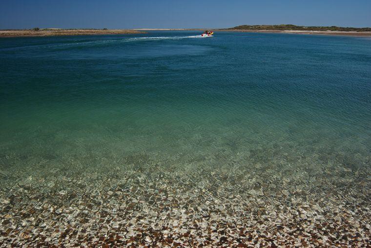 FOTO: Punta Perdices