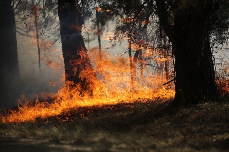 FOTO: Las llamas no dan tregua en la zona de La Paisanita.