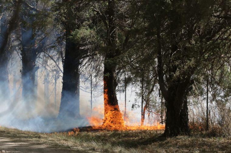 FOTO: Incendio en la zona de Falda del Carmen