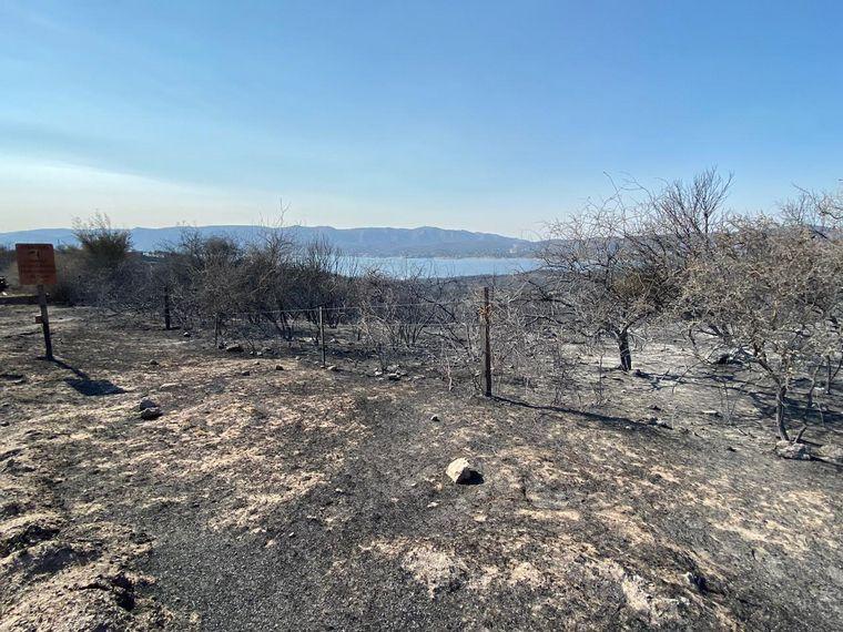 FOTO: Incendio en Pekos, el día después