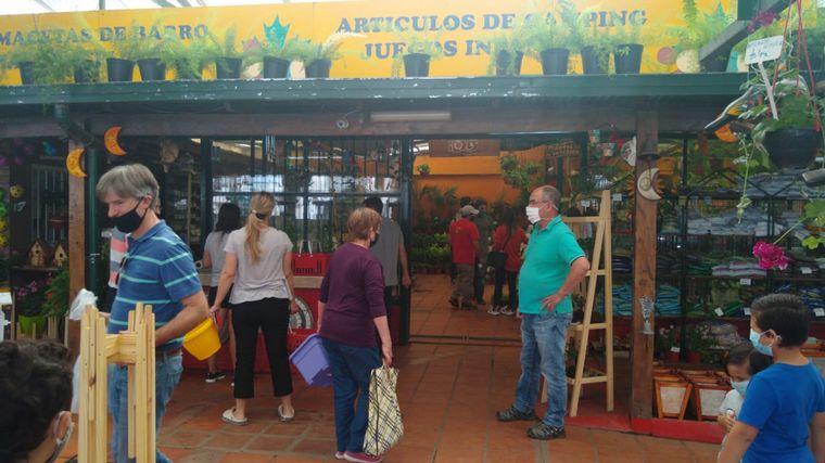 AUDIO: Jardinería en casa, la actividad que se impuso en cuarentena