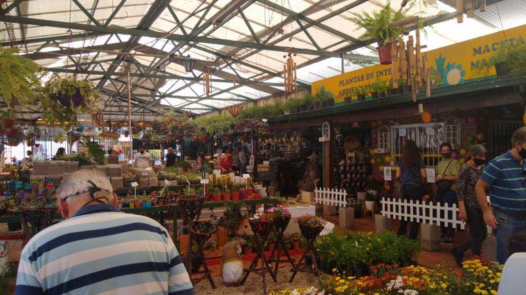 FOTO: Jardinería en casa, la actividad que se impuso en cuarentena