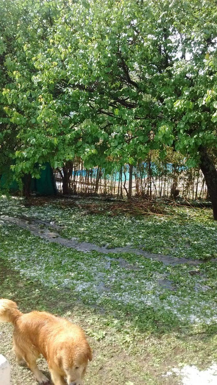 FOTO: Precipitó piedra en seco en la villa serrana durante unos 15 minutos seguidos.