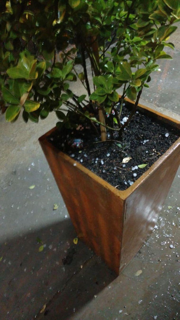 AUDIO: Temporal de lluvia, viento y granizo en el Gran Mendoza