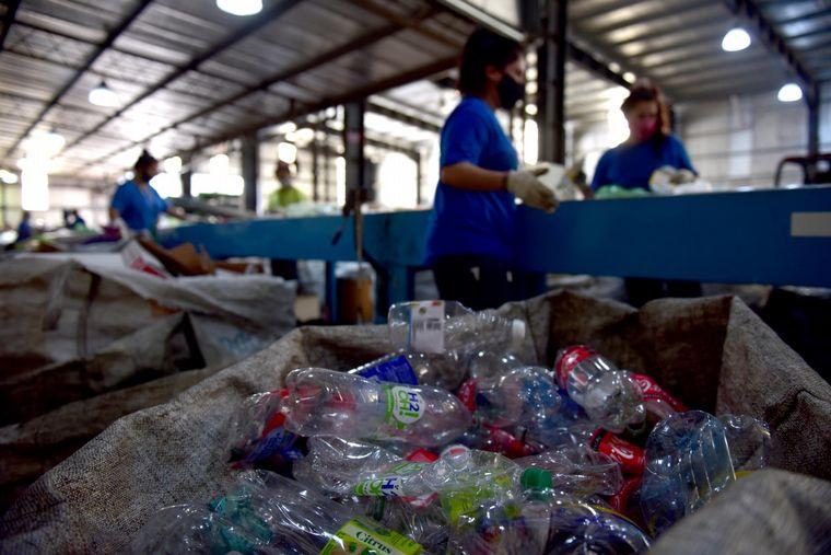 FOTO: Eran cartoneros y hoy emplean a 70 familias en Tigre
