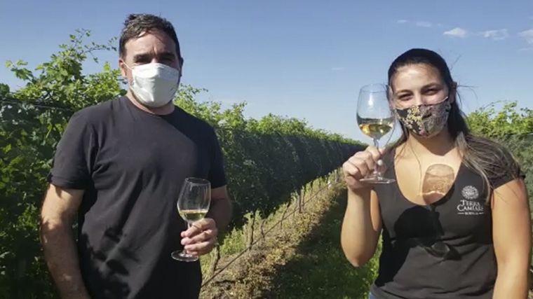 VIDEO: Cuatro vinos cordobeses fueron premiados internacionalmente