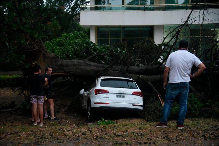 AUDIO: Un temporal azotó Pinamar causando varios destrozos