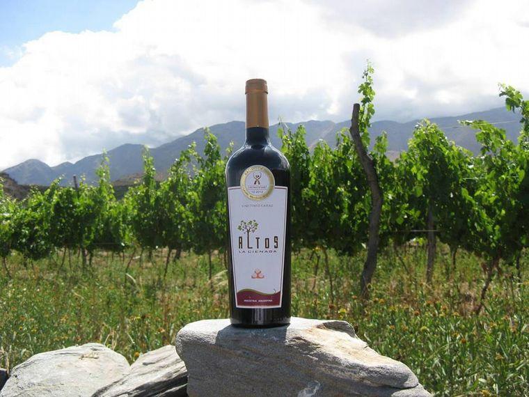 FOTO: La ruta del vino en Tucumán, una experiencia en las alturas