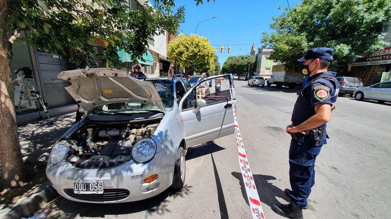 FOTO: Encontró una lampalagua en su auto mientras manejaba.
