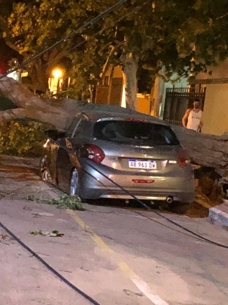AUDIO: Fuerte temporal en La Rioja: destrozos en casas y vehículos