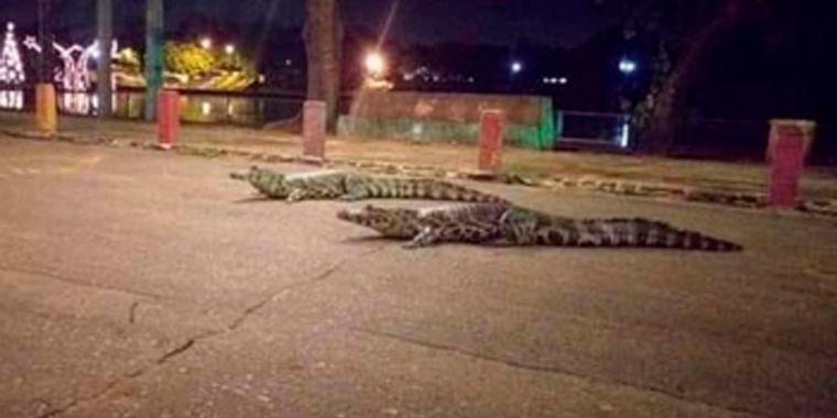 FOTO: Ocurrió en un centro comercial cerca de la capital paraguaya.(FOTO: Jujuy al momento)
