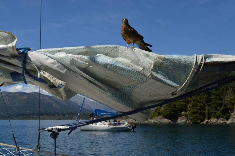 FOTO: Navegando por Nahuel Huapi en el velero