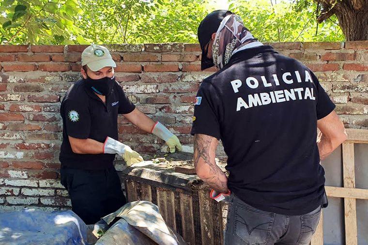 FOTO: Se allanaron cinco propiedades en La Carlota.