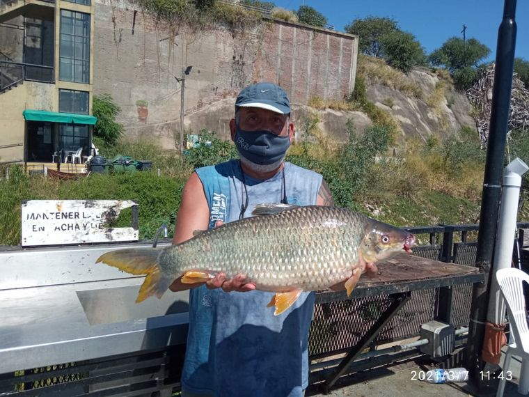 FOTO: Pesca deportiva de boga en la Costanera Central de Rosario