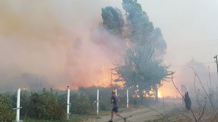 AUDIO: Dramáticas imágenes del incendio en la Comarca Andina