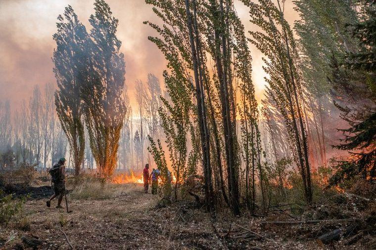 FOTO: El fuego provocó un desastre en la Comarca Andina.