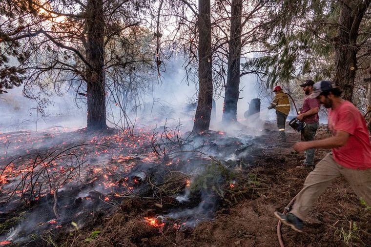 FOTO: Las llamas causaron un desastre en el sur argentino (Foto: Reuters).
