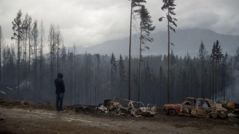 FOTO: Desolador panorama tras los incendios en el sur argentino (Foto: Diario de Río Negro)