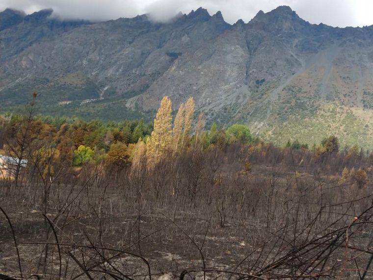 AUDIO: El terrible relato de un sobreviviente del incendio en Chubut