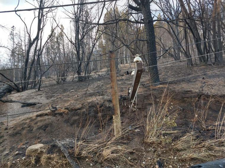 FOTO: Las estremecedoras imágenes del incendio en Chubut