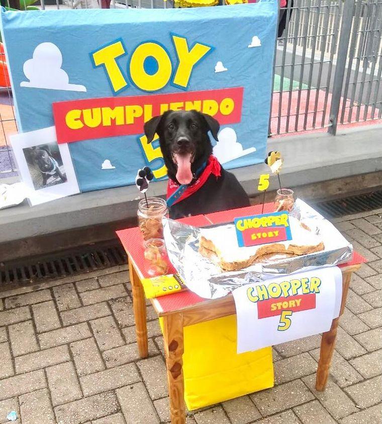 AUDIO: Por la pandemia, comenzó a organizar cumpleaños para perros